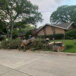 Tree Services3